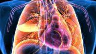 İnsan vücudundan elektrik üreten malzeme!