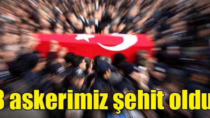 Zeytin Dalı Harekatı'nda 8 askerimiz şehit oldu