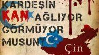 Doğu Türkistan'daki Zulme Dur De!